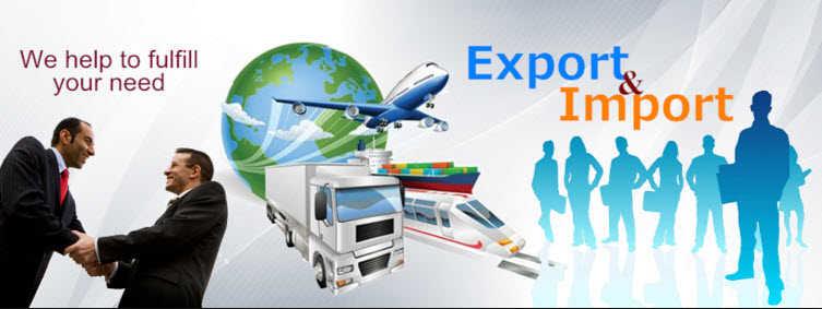 Blue Dart Customs Exporting Guide