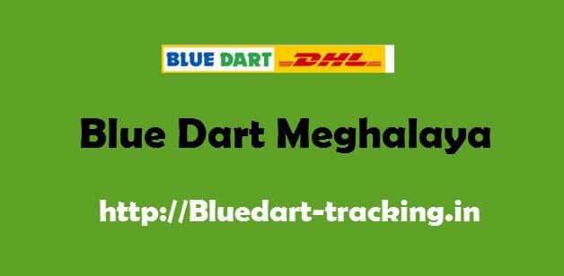 Blue Dart Meghalaya