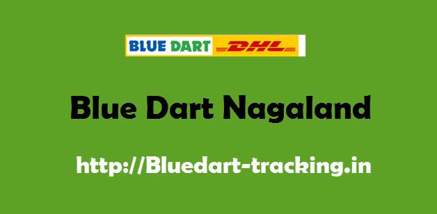Blue Dart Nagaland