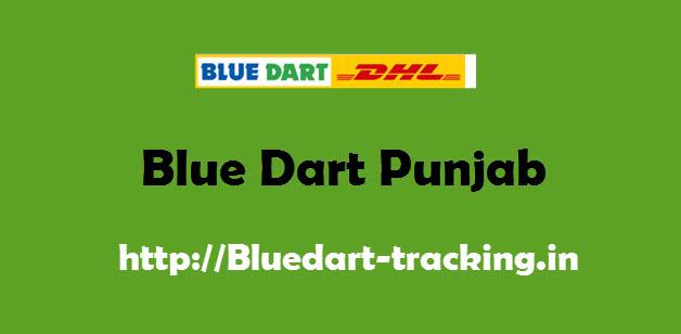 Blue Dart Punjab