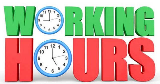 Blue Dart Working Hours